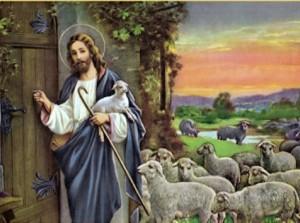 Jésus pasteur2