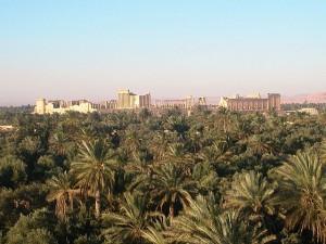 Palmyra_SYRIE_373