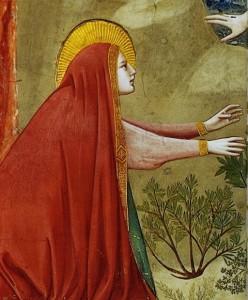 Sainte Marie-Madeleine (détail) Giotto di Bondone (13e)